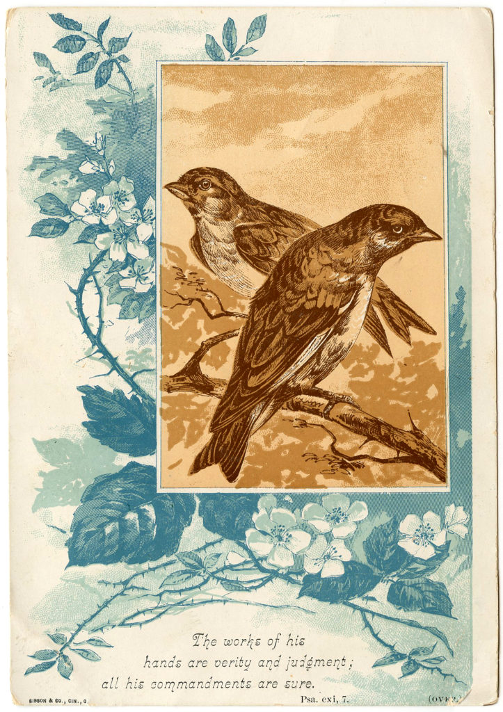 Birds with Wild Roses Image