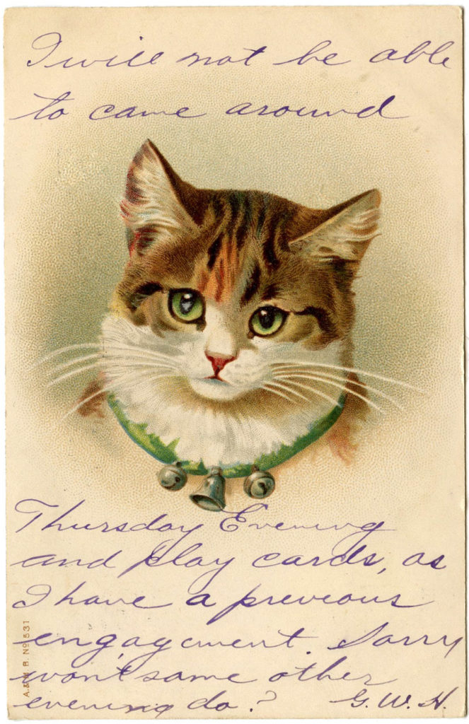 Christmas Bell Collar Cat with Handwriting