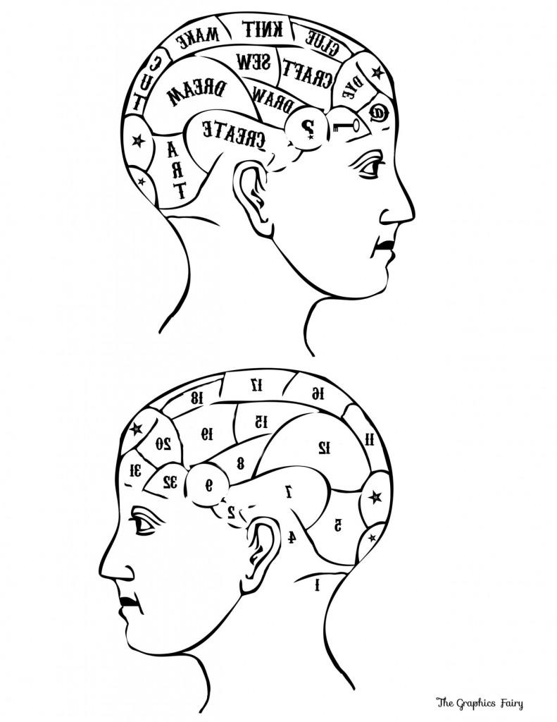 Phrenology Head Printable