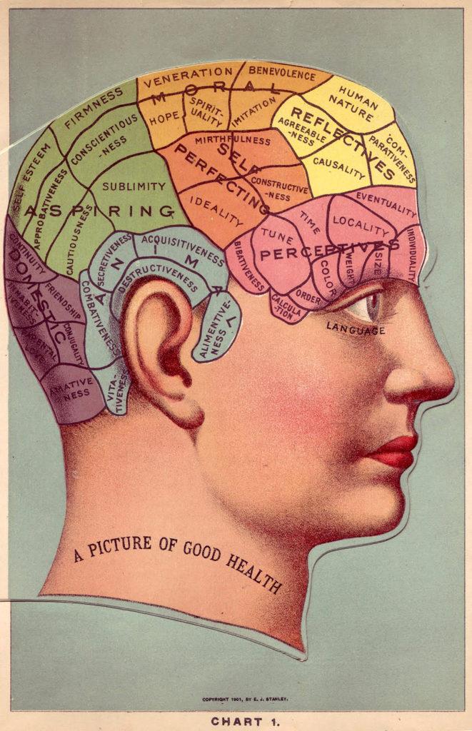 Phrenology Head Chart Color Diagram