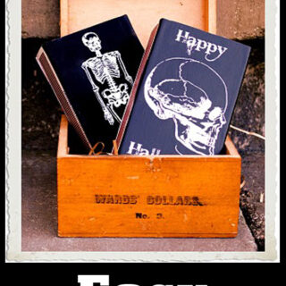 Halloween Match Boxes in Wooden Box