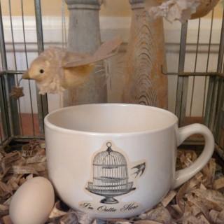 Birdcage Mug – Lazertran Transfer