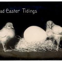 easter+chicks+vintage+graphic--graphicsfairy007
