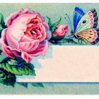 241cards+vintage+images+graphicsfairy4blk