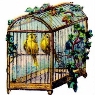 Vintage Clip Art – Canary Bird Cage