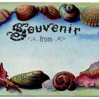 souvenir+beach+vintage+images+graphicsfairy004b