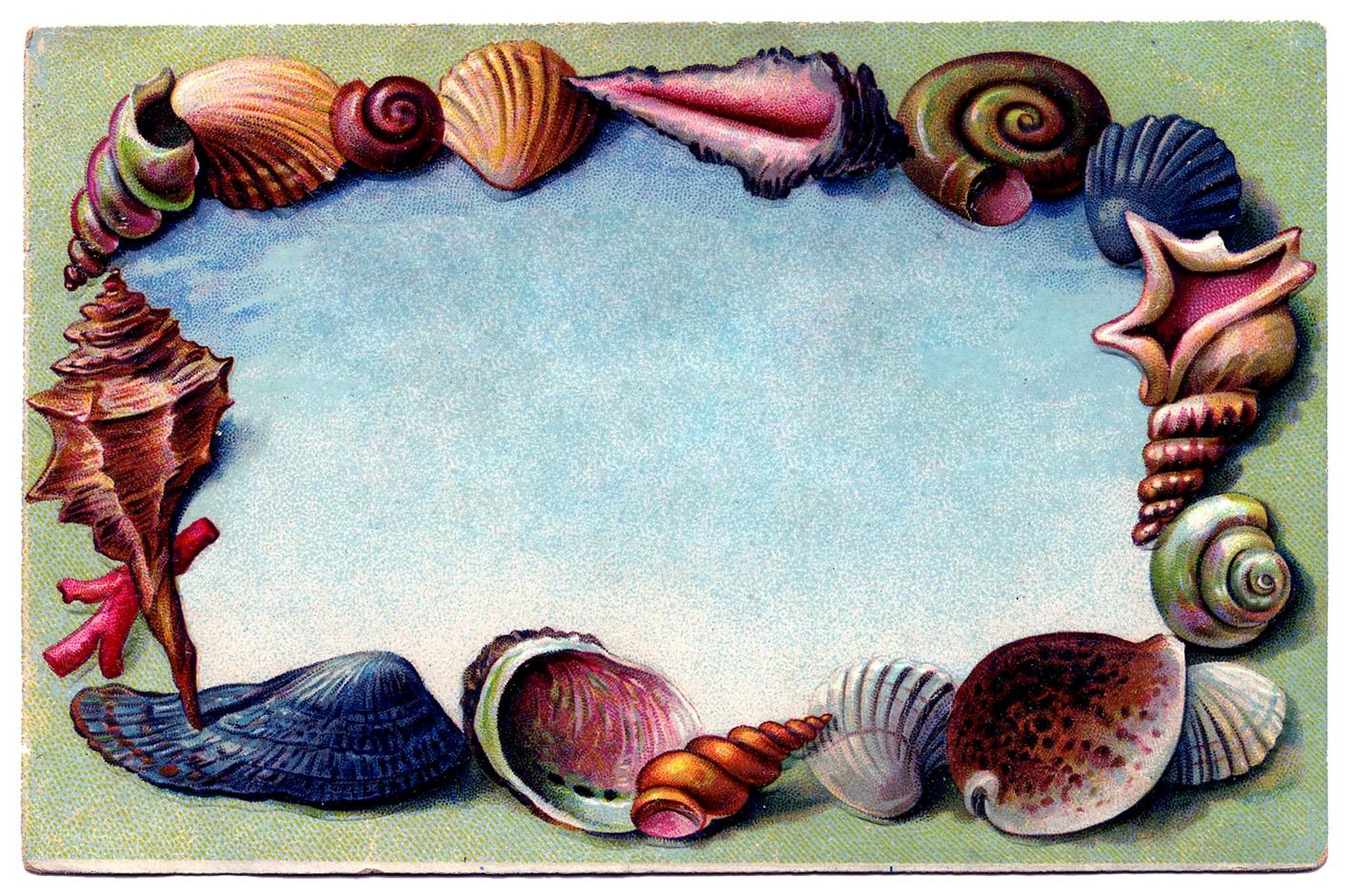 vintage clip art - souvenir seashell postcard  2