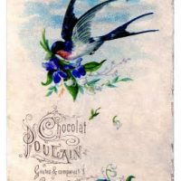 Vintage Image - Flying Swallow with Violets