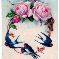 bird+roses+frame+vintage+graphicsfairy005b
