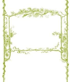 Vintage Clip Art – Amazing Faux Bois Frames