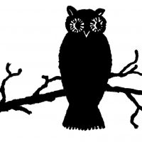 Owl Silhouette Image