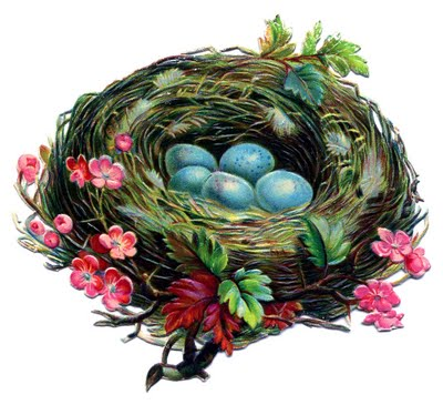 Vintage Clip Art Pretty Nest with Blue Eggs The