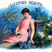 Vintage Graphic - Sleeping Beauty