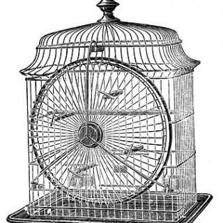 Antique Clip Art – Cute Wire Birdcage