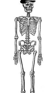 Vintage Halloween Clip Art – Fancy Skeleton Man
