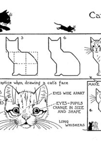 photo relating to Cat Printable named How in direction of Attract a Cat - Printable Drawing Lesson - The Graphics