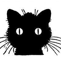 Draw Cats Vintage Black Cat Image