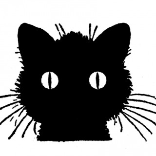 Draw Cats Vintage Black Cat Image