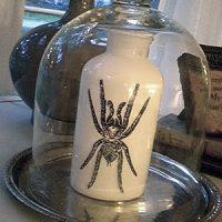 halloween+spider+bottle