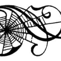 Spider Web Scrolls Image