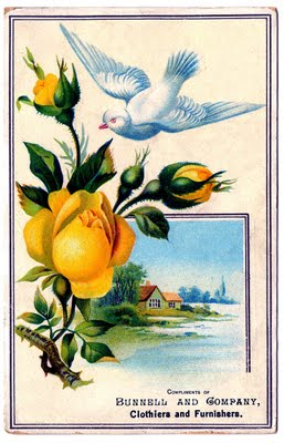 Vintage Graphic - Bright Yellow Rose with Pretty Dove - The Graphics Fairy