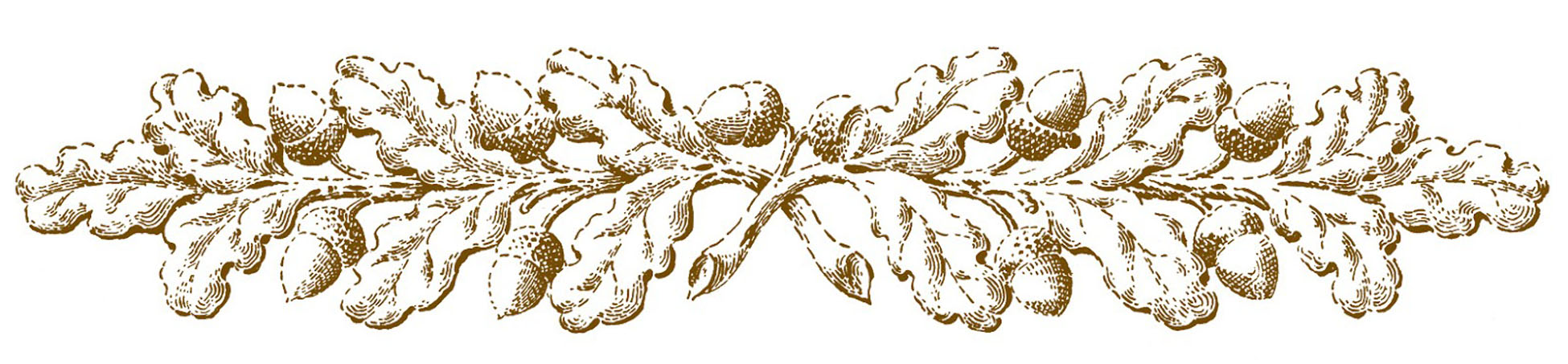 16 oak leaf images with acorns the graphics fairy 16 oak leaf images with acorns the