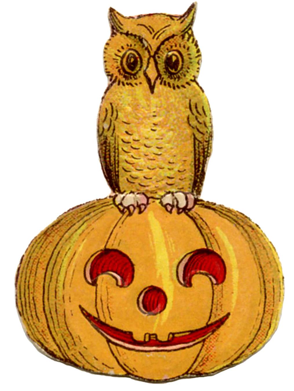 Vintage Halloween Clip Art - Cute Owl on Pumpkin - The Graphics Fairy