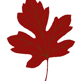 Vintage Fall Clip Art – Maple Leaves