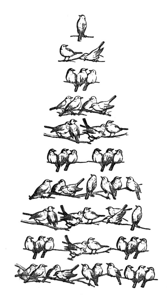 Christmas Clip Art Birds