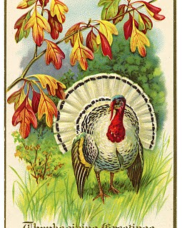 Vintage Thanksgiving Clip Art – White Turkey