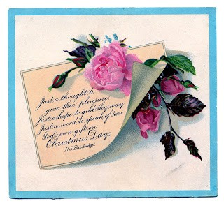 Victorian Graphic – Pink Roses