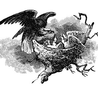 Vintage Clip Art – Eagle with Nest and Babies