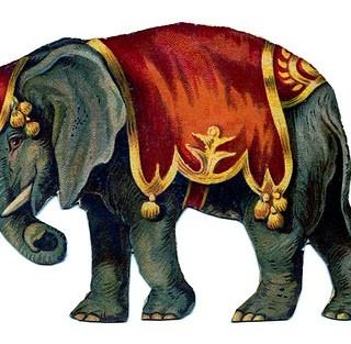 Vintage Image - Circus Elephant