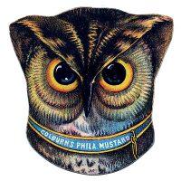 Vintage Graphic, Fabulous Owl Head