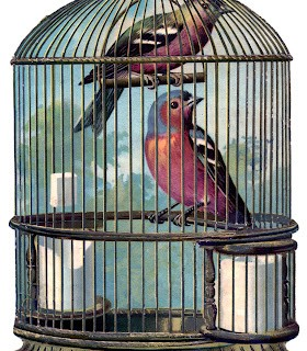Vintage Graphic – Fabulous Bird Cage with Birds
