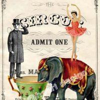 circus+in+town+Tania-WildHeart