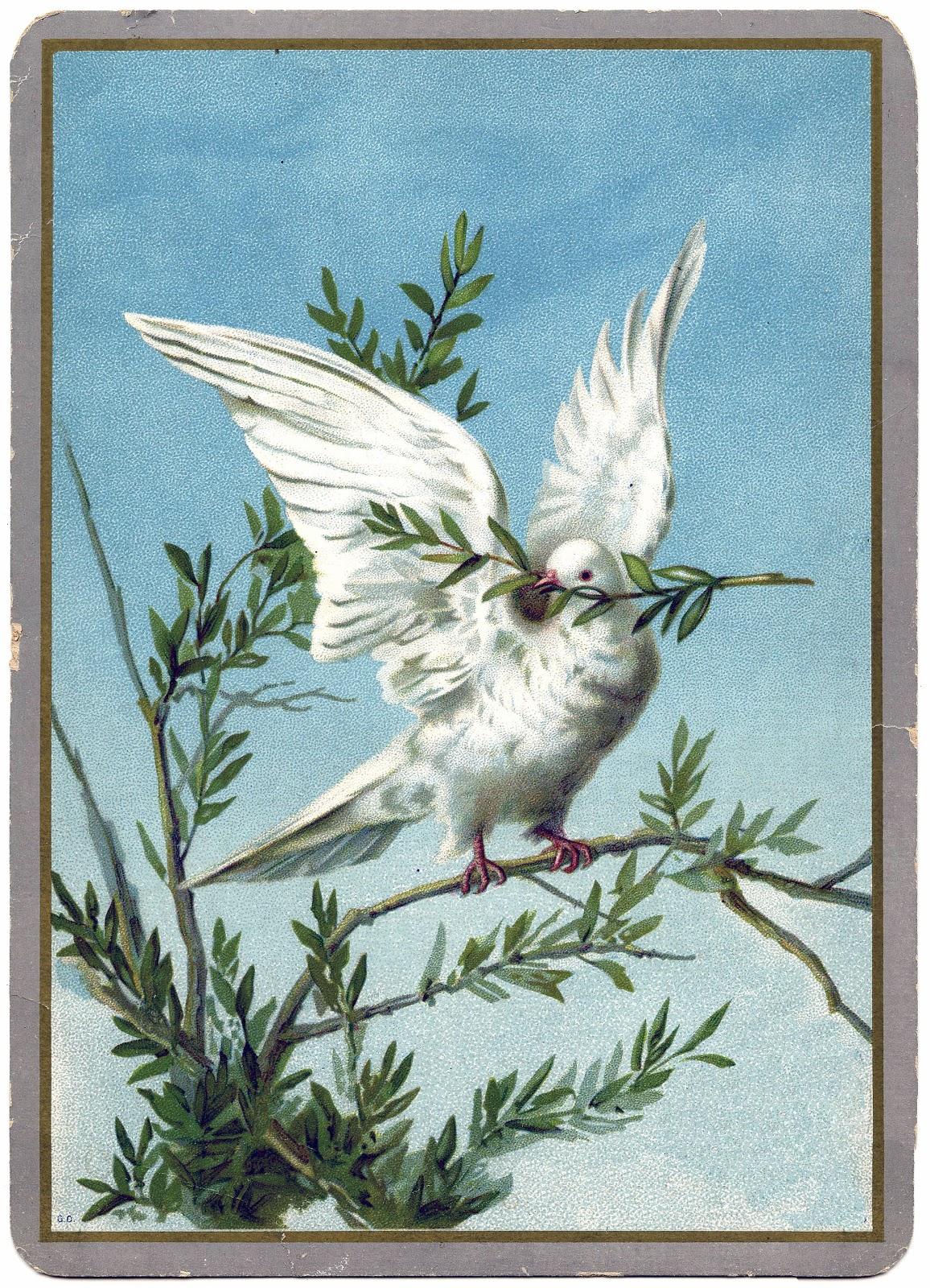 White dove christmas ornaments - Vintage Christmas Clip Art Dove