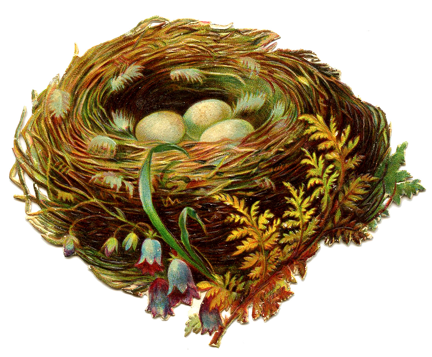 Vintage Graphic Pretty Nest With Eggs 2 The Graphics Fairy