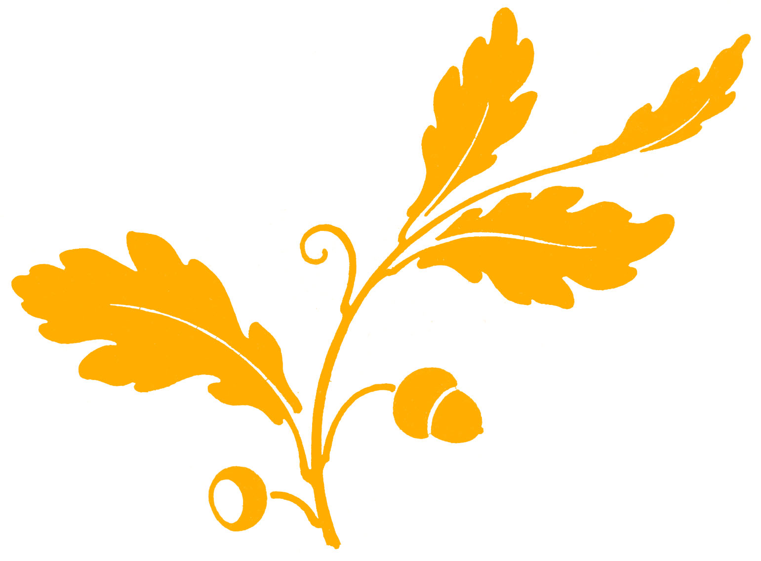 Gold Acorns and Oak Leaves Silhouette Image