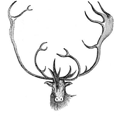 Vintage Animal Clip Art - Caribou