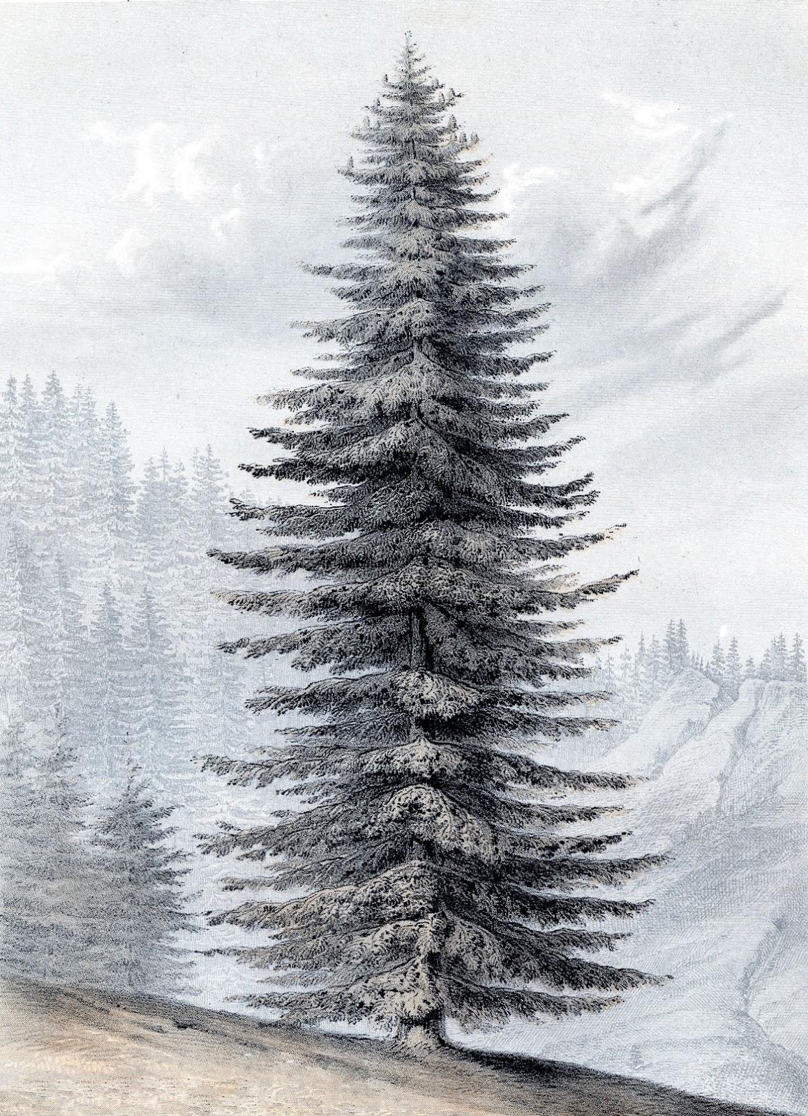 Instant art printable glorious giant christmas tree