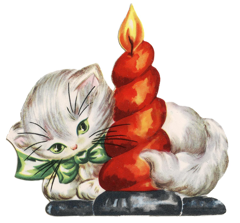 Μία γλυκιά γατούλα...