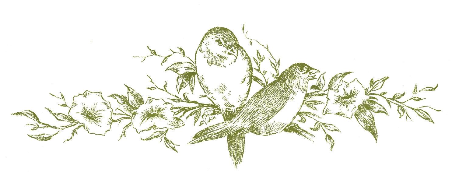 vintage sketches birds on floral branch the graphics fairy rh thegraphicsfairy com Christmas Bulletin Clip Art Black and White Clip Art