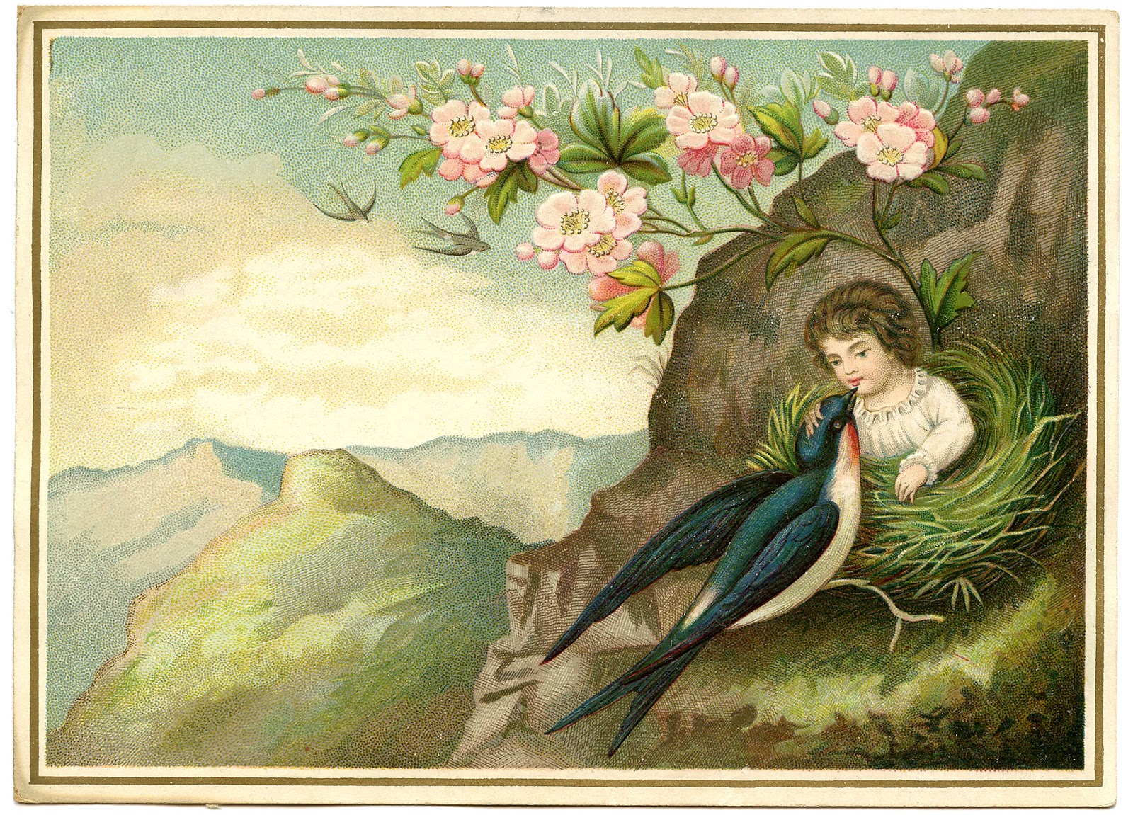 Vintage Image Amazing Girl In Nest Surreal The