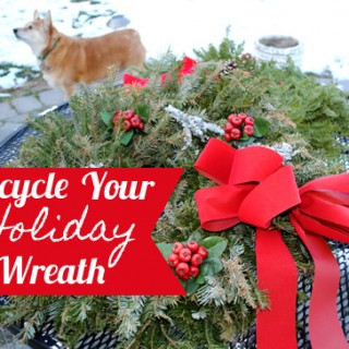 Recycle – Reuse – Your Holiday Wreath