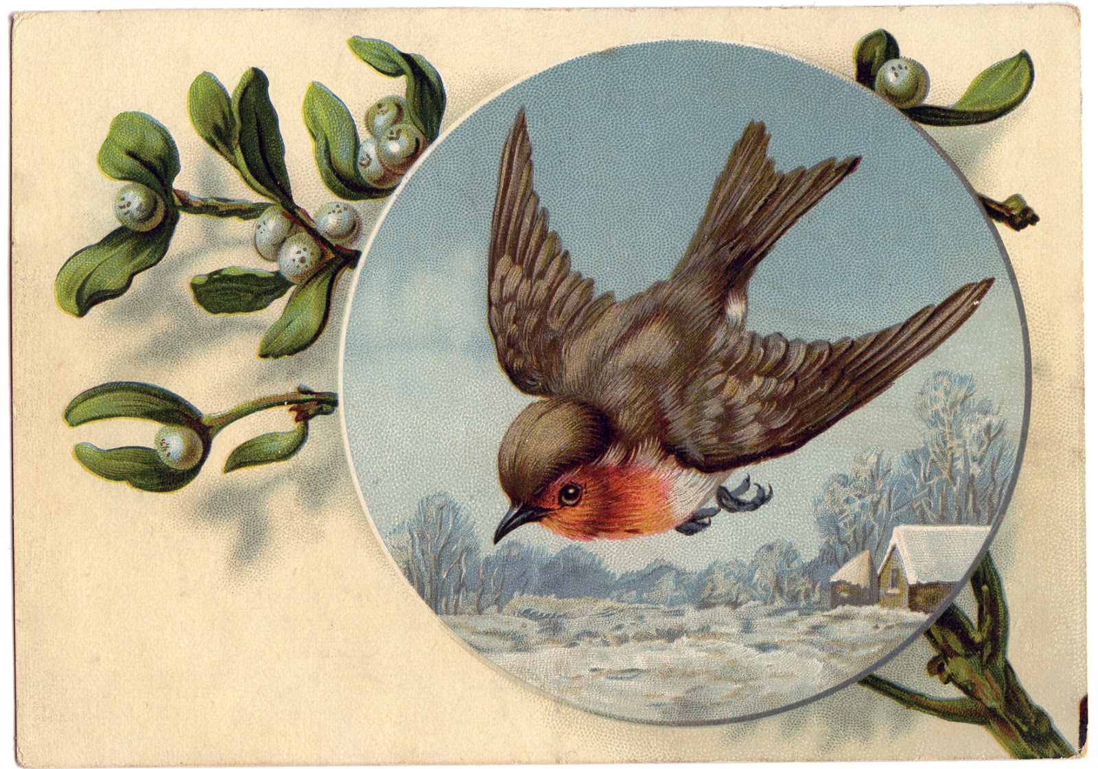 Royalty Free Images Winter Bird Robin The Graphics Fairy