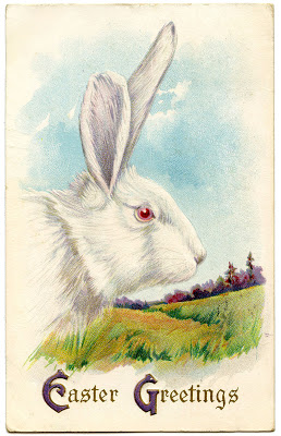 Royalty Free Image Easter Bunny White Rabbit