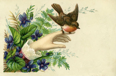 Victorian Hand  Robin  Violets