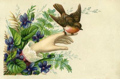 Victorian Hand  Robin  Violets