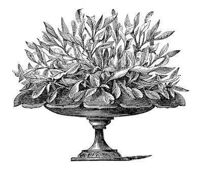 Royalty Free Images Victorian Urns Garden Graphics Plants